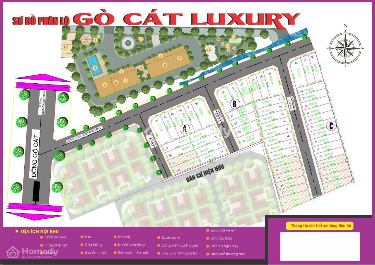 go cat luxury