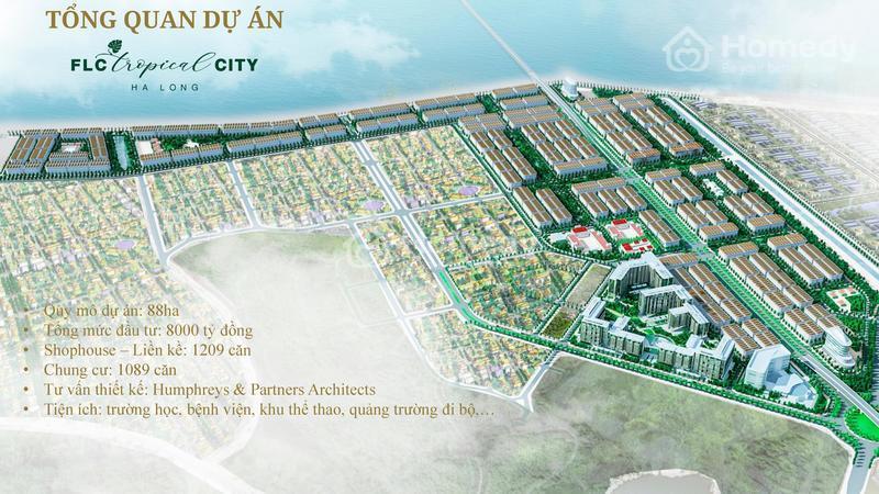 FLC tropical city