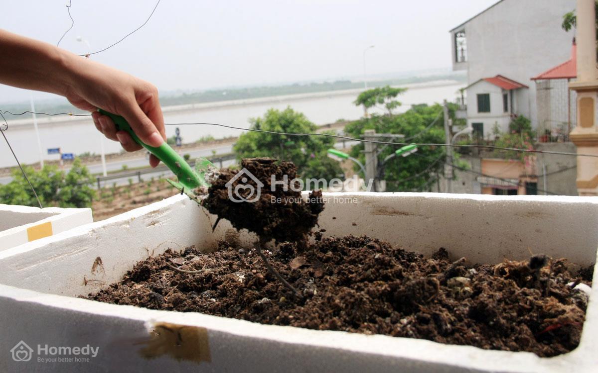 Chuẩn bị thùng xốp và làm đất